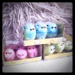 🐣🐥 🐥Baby chicks half dozen 3 colors 🐤🐤🐤